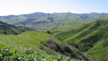 chino hills,CA